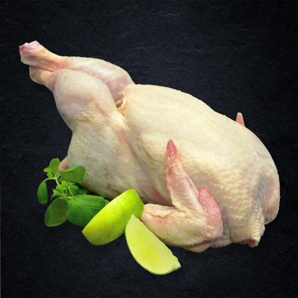 chickendeal-foraarskylling-min